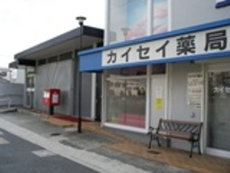 closeup_sakai_01.JPG