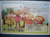 closeup_sakai_10.JPG