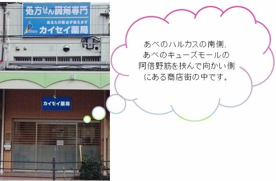 closeupharukasminamiH26.31 (550x362).jpg